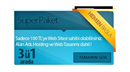 100 tl ye web tasarımı
